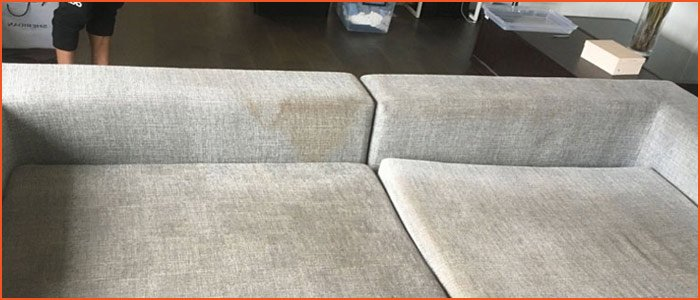 Upholstery Cleaning Westall