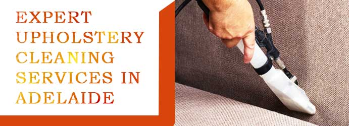 Expert Upholstery Cleaning in Adelaide