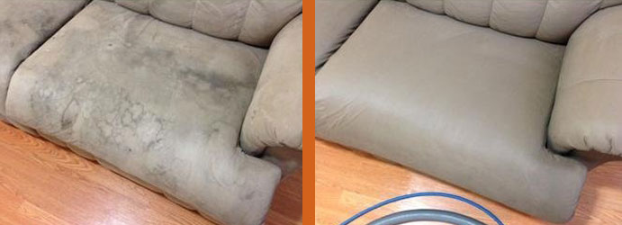Upholstery Cleaning Services Page