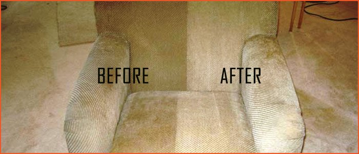 Upholstery Cleaning Lemon Tree